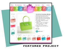 Web Site Design for Jelly Bags